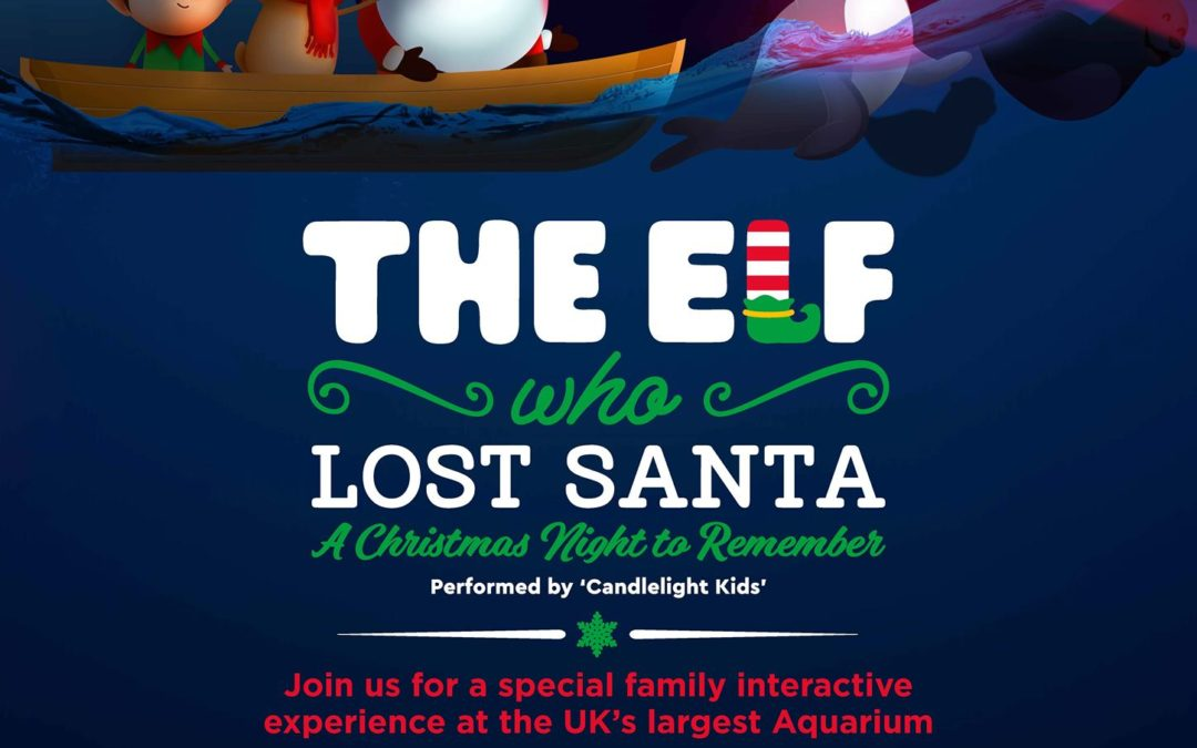 Christmas Nights to Remember – The Elf Who Lost Santa